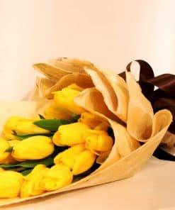 Hoa tulip-007