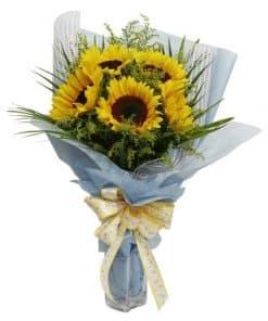 hoa huong duong- hoa tang sinh nhat BD-015