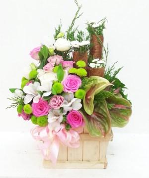 Hoa tươi đẹp HG-011