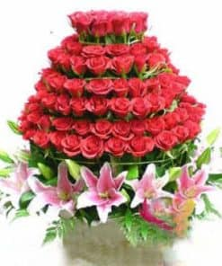 Hoa hồng HG-022