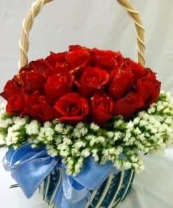 Hoa hồng HG-041
