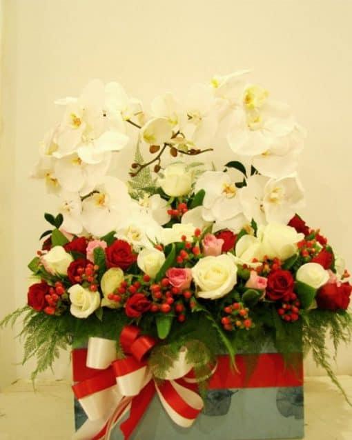 hoa sinh nhật HH-022
