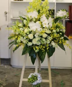 hoa tươi đẹp HK-043