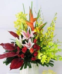 hoa tang sinh nhat HG-054