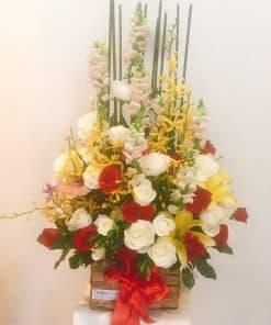 lang hoa dep HG-052