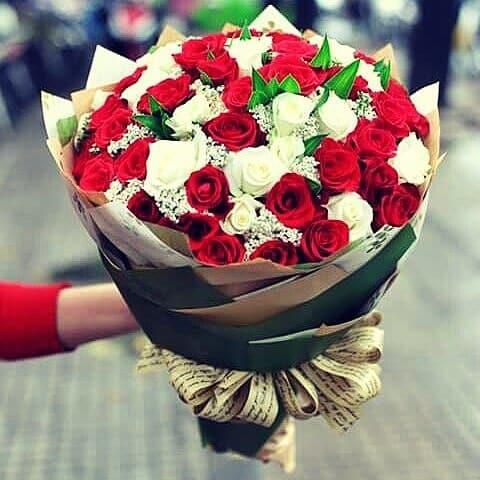 mua hoa tươi TPHCM