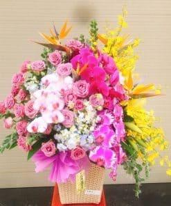 gio hoa dep HG-048